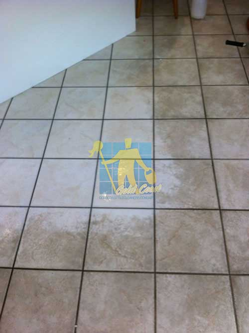 before and after cleaning limestone floor